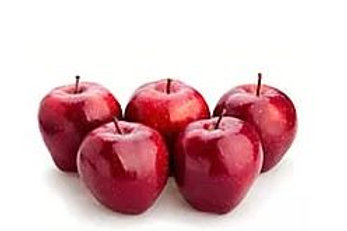Malus domestica - 'Red Delicious' Apple