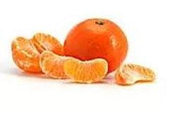 Citrus reticulata - 'Okitsu Satsuma' Mandarin