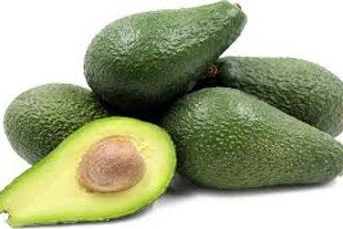 Persea americana (A) - Pinkerton Avocado
