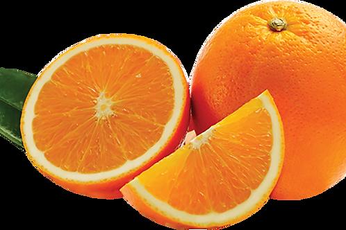 Citrus sinensis - 'Summer' Navel Orange