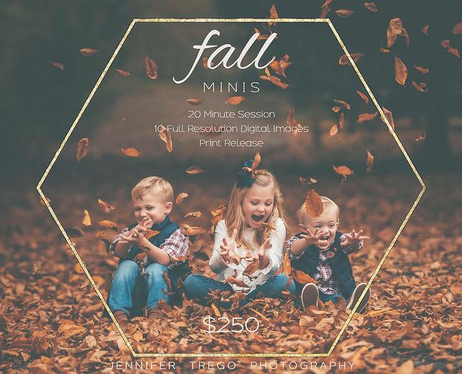 Fall Minis 2021 copy.jpg