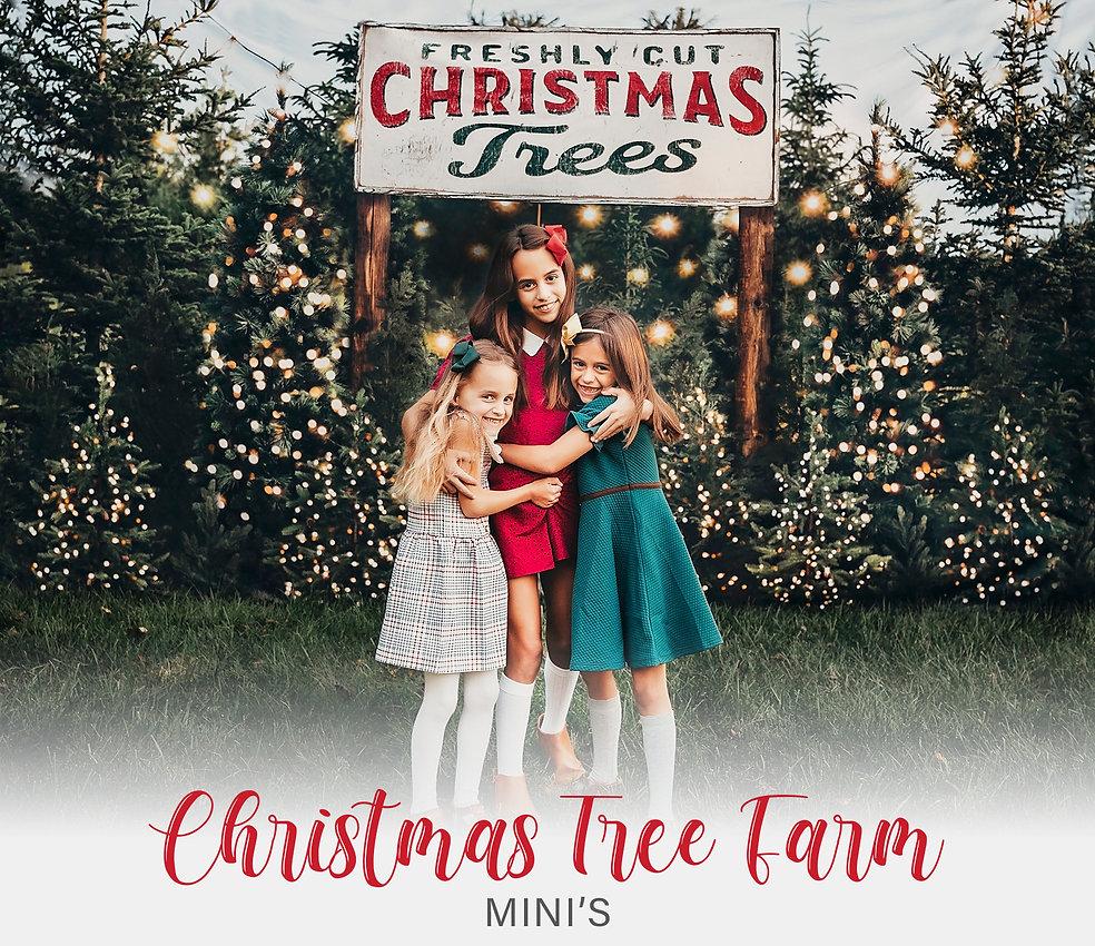 Christmas Tree Farm Minis-2021.jpg