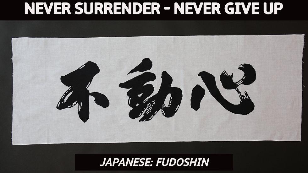 NEVER SURRENDER - NEVER GIVE UP