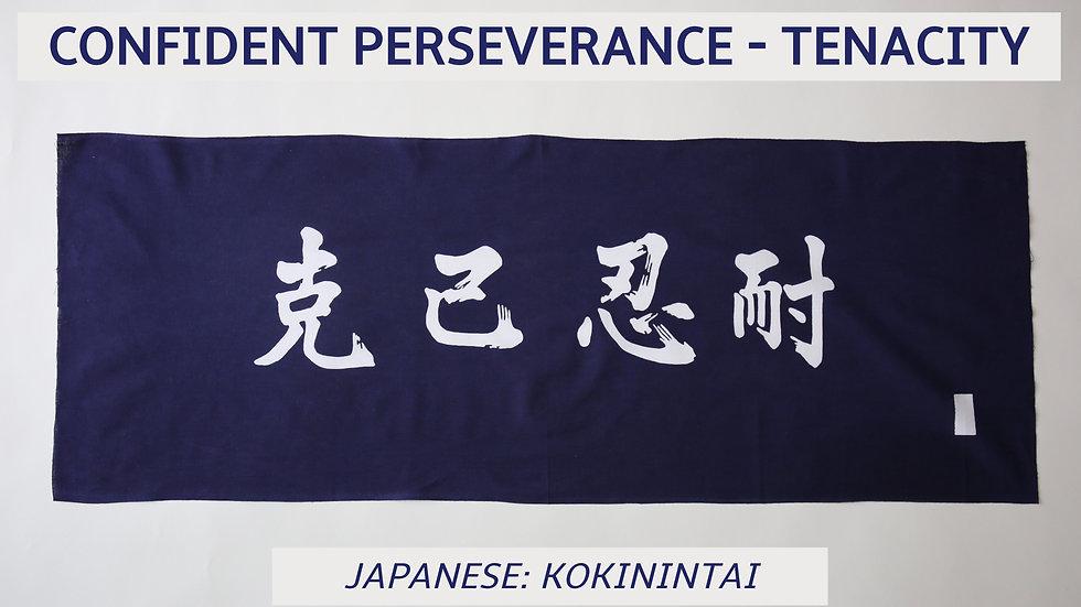 CONFIDENT PERSEVERANCE -TENACITY