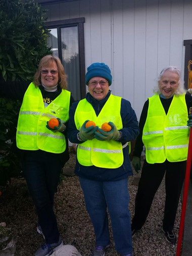 Gleaning for Waste Management