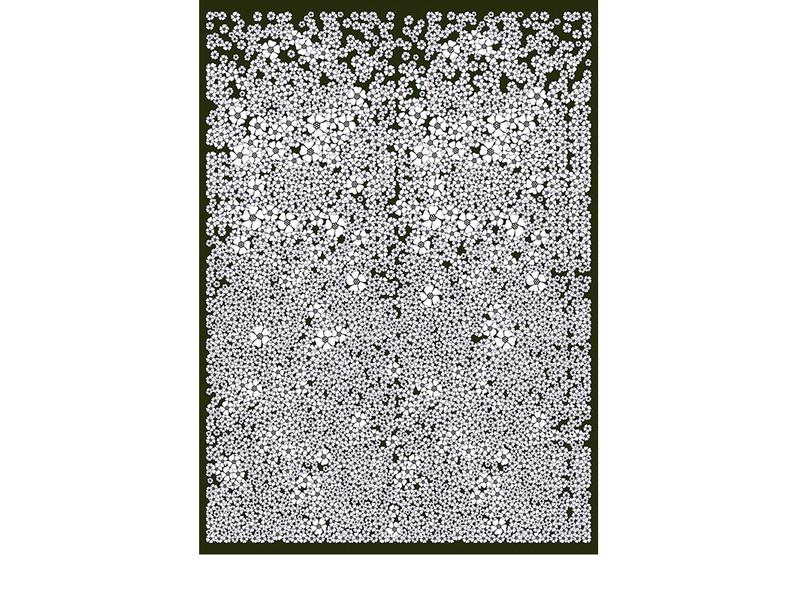 CHAMP DE FLEURS-ardoise-180x250