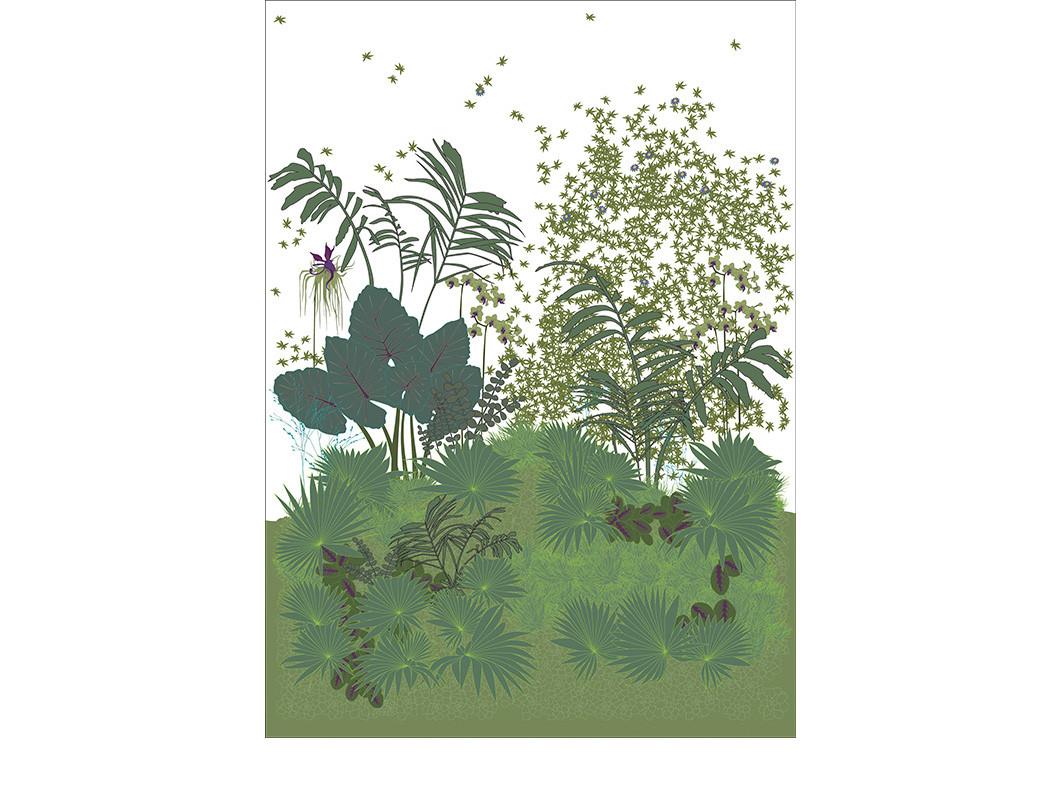 JARDIN-DES-PLANTES-col.1-180x250