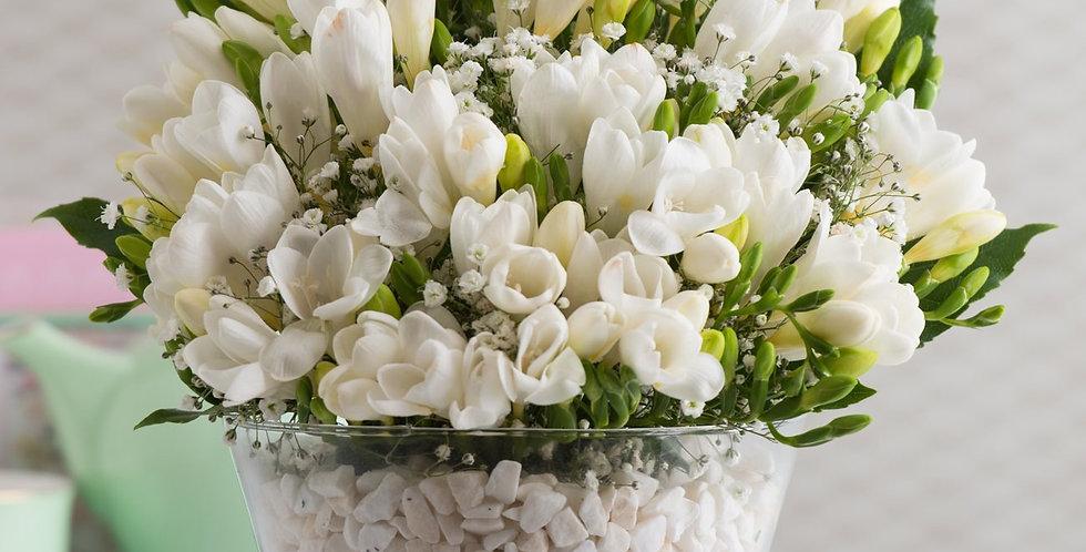 Konik Vazoda Beyaz Frezya Çiçekleri