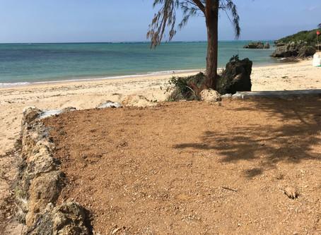 プライベートビーチ プロジェクト進行状況
