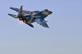 F-15 Flanker.jpeg
