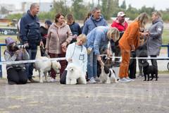 Dog Show-23.jpg