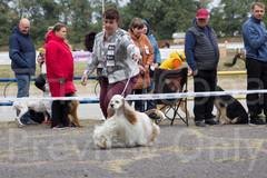 Dog Show-15.jpg