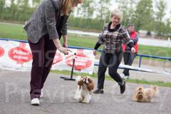 Dog Show-486.jpg