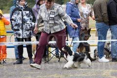 Dog Show-25.jpg