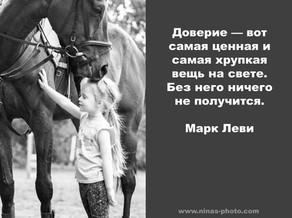 фотосессии с лошадьми тамбов