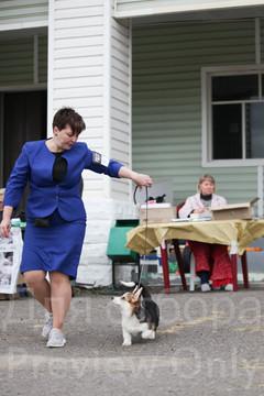 Dog Show-43.jpg