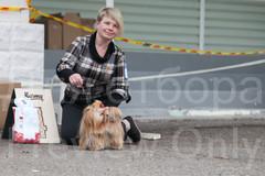 Dog Show-535.jpg
