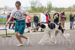 Dog Show-510.jpg