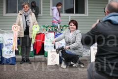 Dog Show-517.jpg