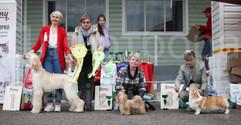 Dog Show-523.jpg