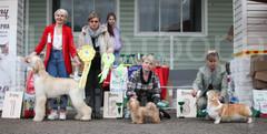 Dog Show-522.jpg