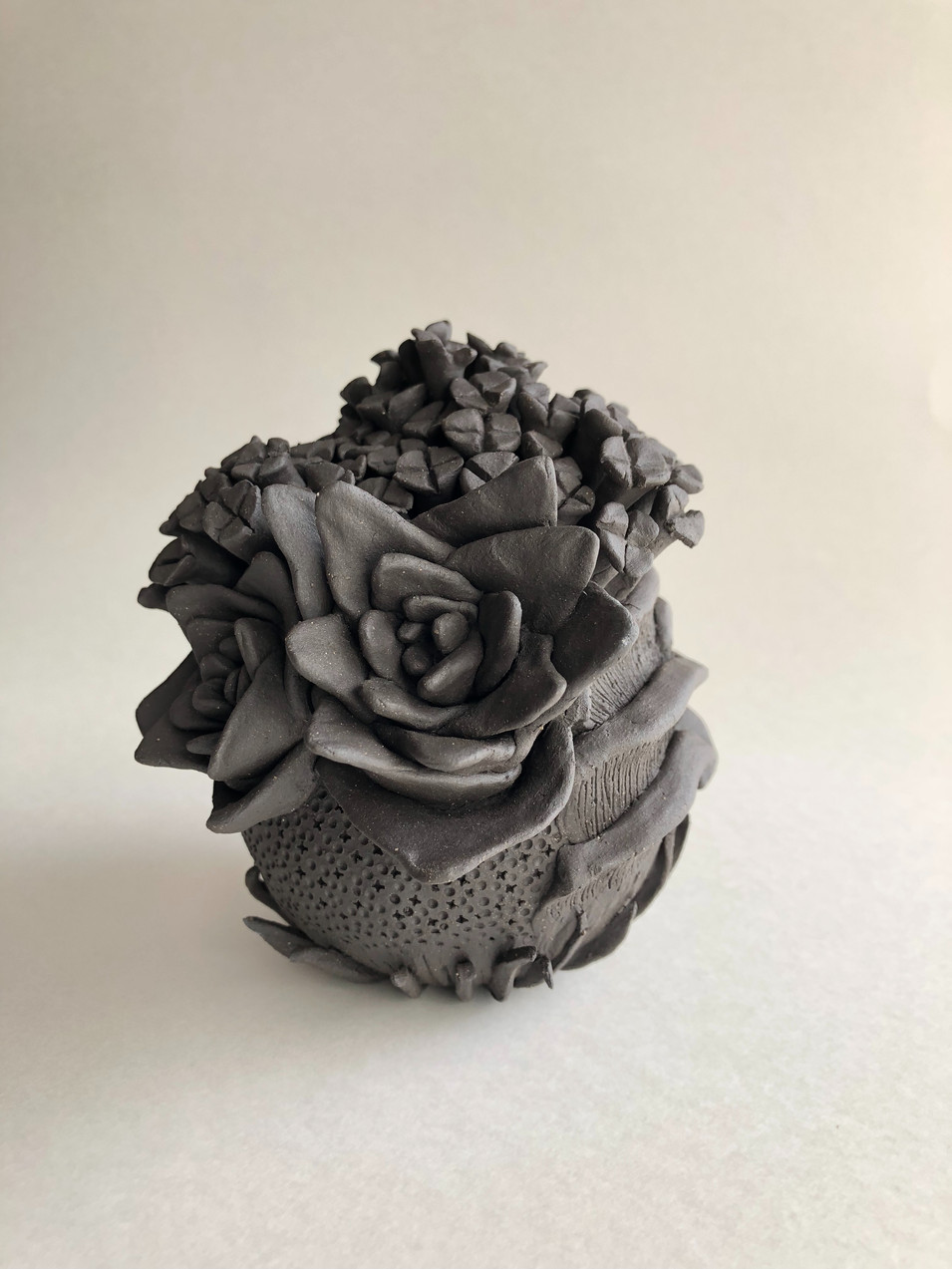 Black succulents #1