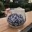 Thumbnail: Fancy Hydrangea Mug
