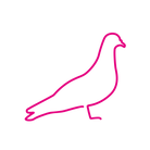 Neon Pigeon Pink Icon Logo.png