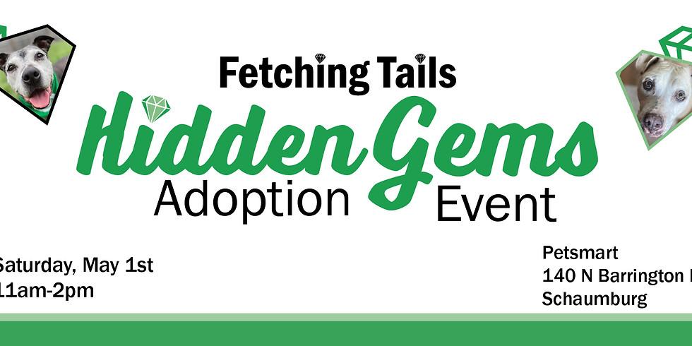 Hidden Gems Adoption Event