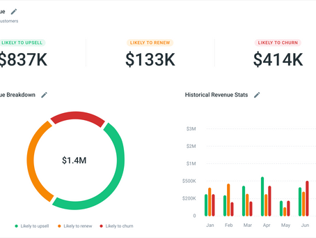 Maximize Revenue Growth with Actionable Insights