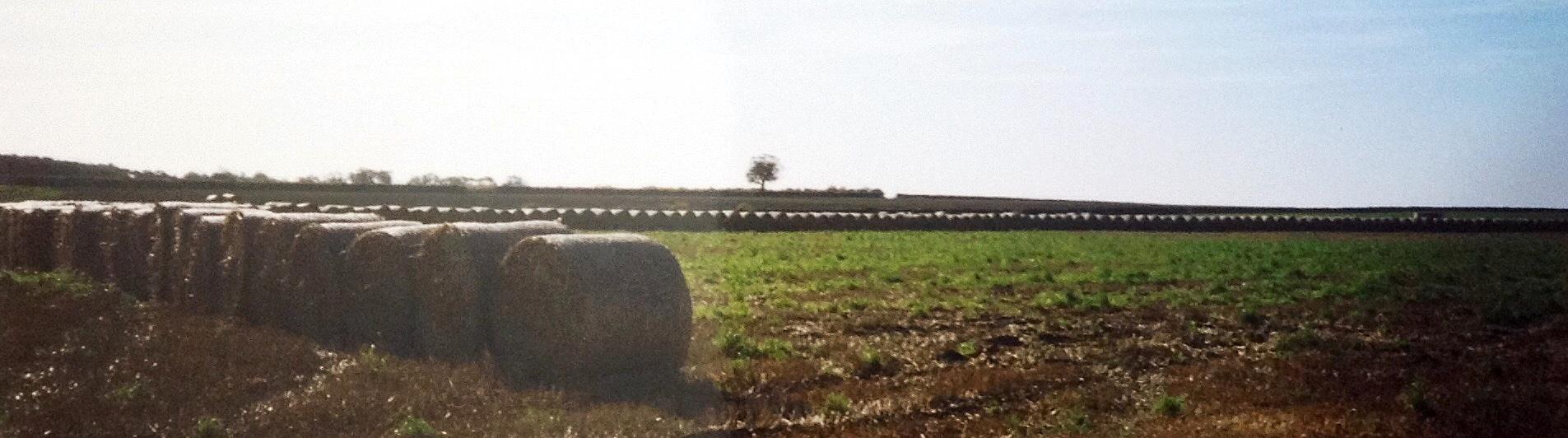 Ulceby Cross 1998