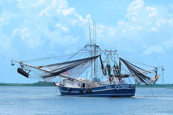 Shrimp Boat, Coastal landscapes, Shrimping, Florida Landscapes, Boats