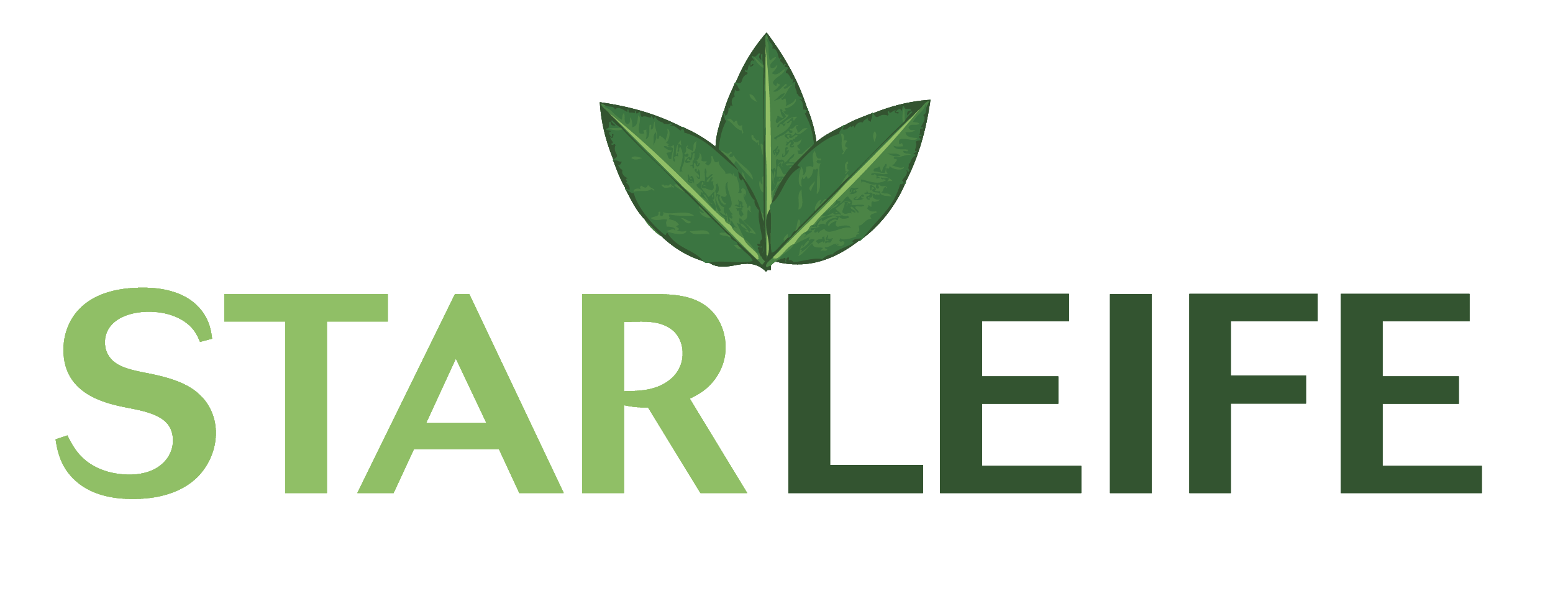 StarLeife Concept