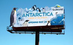 Antarctica Attraction Billboard