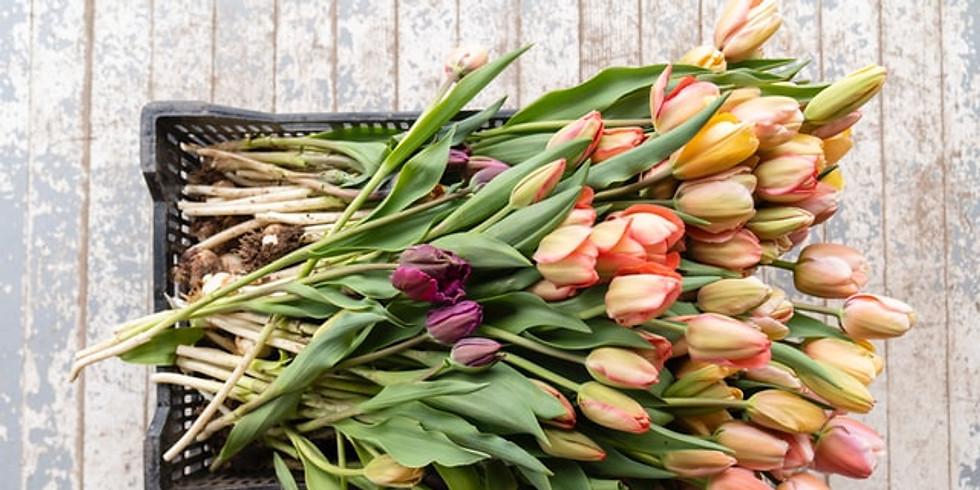 Skapa ett blomsterarrangemang. OBS! Flyttad till 2021