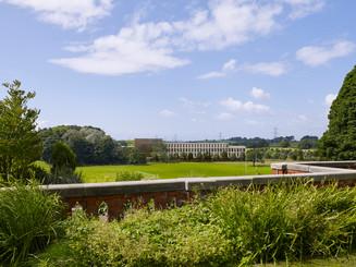 University of Lancaster - John McAslan + Partners - Verified Planning
