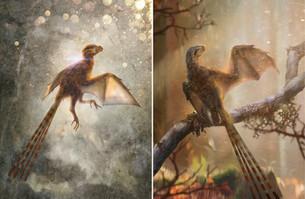 Ambopteryx longibrachium- Wang et al., 2019
