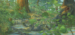 Hypacrosaurus stebingeri- Bailleul et al., 2020