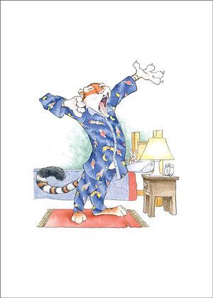 Mr. Timmons' Pajamas