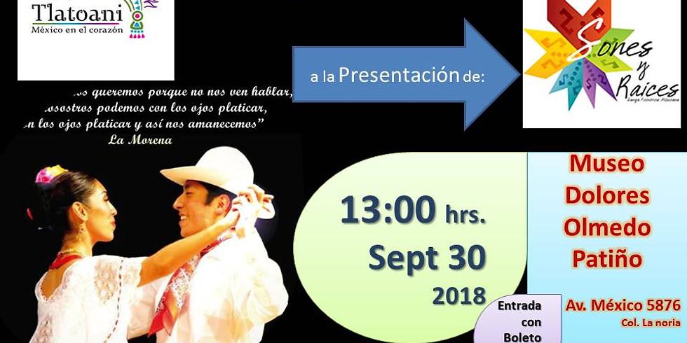 Mas Tlatoani Invita a ver: Sones y raíces Danza mexicana