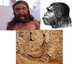 ciccillo-e-neanderthal