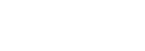 Nike Branding Project