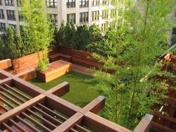 image of decking trellis in backyard