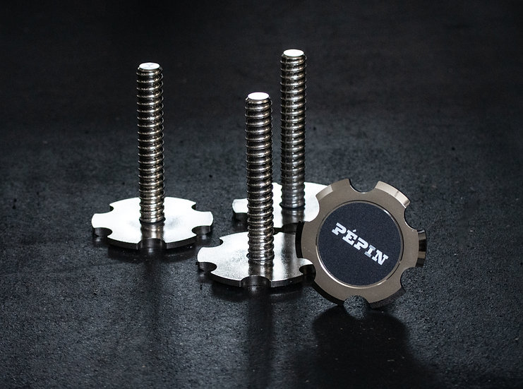 Dumbbell Pépin set of 4 long screws without handle