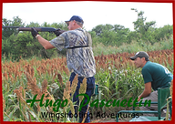 1000 Doves Club- HP Wingshooting