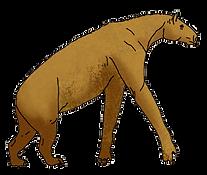 Pliocene.png