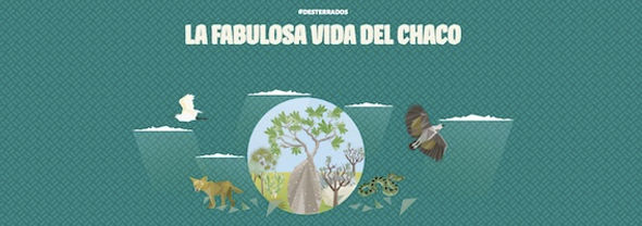 Paraguay - prize art - site shot.jpg
