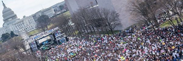 Parkland march shot long and skinny-wide