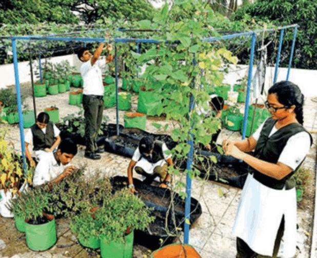 CLIMATE - INDIA manasvini_garden_school.