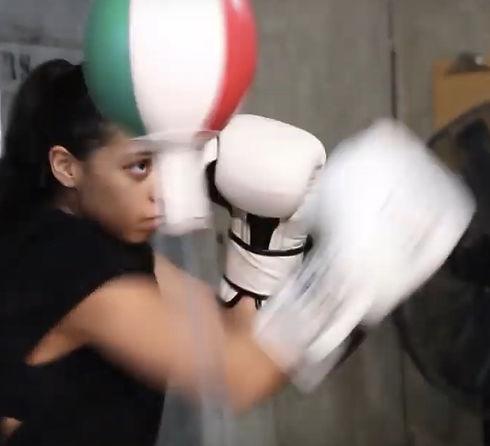 USA • Boxer Oriandy.jpg